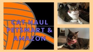 Petsmart & Amazon Cat Haul | + Some Tips!