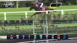RACE REPLAY 2015 Woodbine Mile