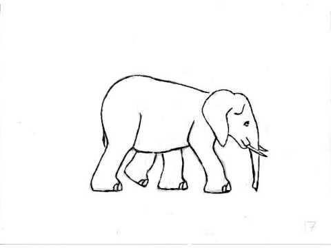 Elephant Hand Hand Drawn Elephant Walk Cycle