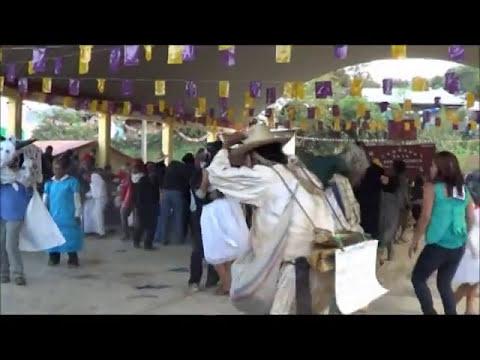 San Gregorio Ilamatlan Ver Carnaval 2014 parte1