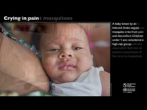 Chikungunya: the virus that