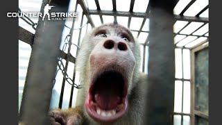 ZOMBIE KAMPUNG BERUK! - 'CS:GO Hide & Seek Malaysia' (w/ Team Fires)