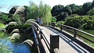 Shinjuku Gyoen - Japanese Park, Tokyo ?? ? ???? (Early Autumn 2015)