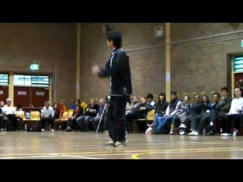 Sydney 2011 Kung-fu and Tai-chi Grand Performance - Xingyi BaShi - Gordon Yung Image 1