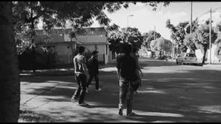 Vídeo 54 de Árbol