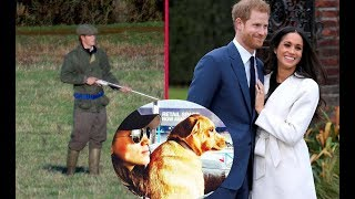Prince Harry did not join royal Boxing Day because his fiancé loved animals