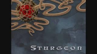 Watch Sturgeon Blip video