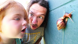 MY PET SNAIL!! New Morning Routine catching bugs with Adley in Hawaii
