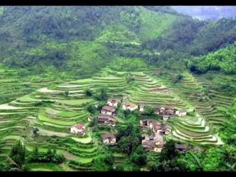 China Terraced Fields 中國梯田
