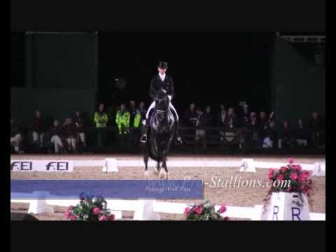 Grand prix dressage movements