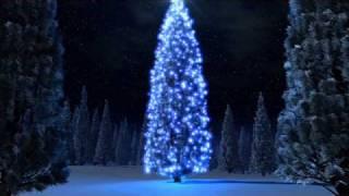 Watch Jimmy Eat World Last Christmas video