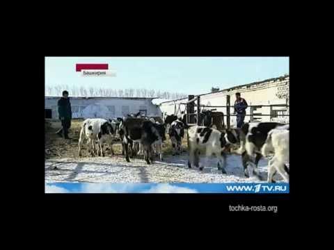 Первый канал о Шаймуратово.