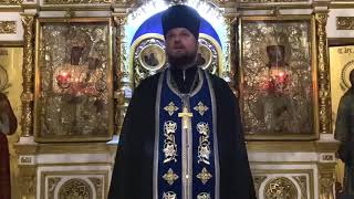 Проповедь настоятеля Спасского храма иерея Димитрия Полещука на Всенощном бдении.