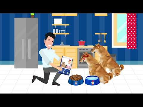 SmartHeart Mother & Baby Dog- Thức ăn dinh dưỡng chuyên biệt dành cho chó mang thai và chó sơ sinh