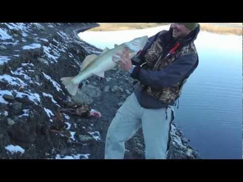 бесплатная рыбалка в симферополе