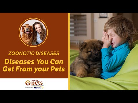 Zoonotic Diseases/Zoonoses - Diseases You Can Get From your Pets