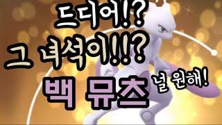 [포켓몬고] 드디어 백 뮤츠가?! 교환을 통해 뮤츠 100%를 얻기 위한 험난한 도전! The Trading for 100% Mewtwo! Pokémon Go in Korea
