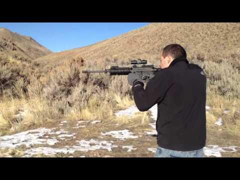 Bushmaster AR-15 Carbon 5.56