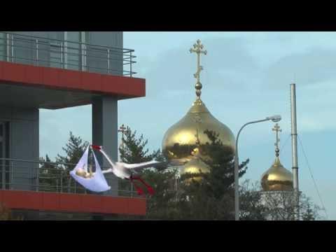 Выписка из роддома Перинатальный центр Краснодар