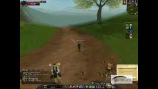 Silkroad Online When I am 46 level, and I am a Thief