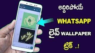 Whatsapp New Trick Send Live Wallpaper On Whatsapp! In Telugu 2018