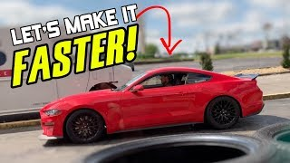 "My 2019 Mustang GT Gets ""RACING SUSPENSION"" From BMR - Springs, Vertical links & Toe Rods"