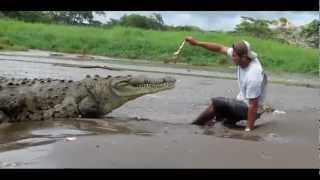 How Not to Feed a Crocodile