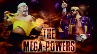 WWE WrestleMania V - OSW Review #13