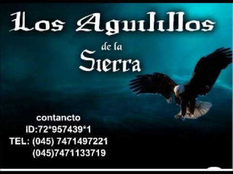 Los aguilillos de la Sierra-Jose Angel Nava (2012)