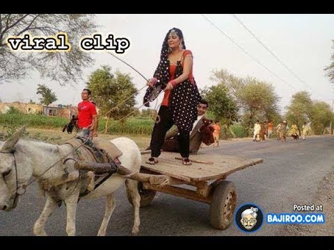 Top viral clips 208 |Facebook and whatsapp viral clips