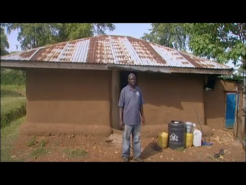 Shamba Shape Up (Swahili) - Tree Planting, Tomato Planting, Chickens
