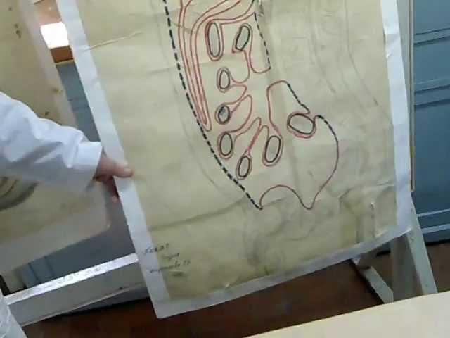 Схемки - Образцы - Схема хода