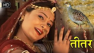 Thari Boli Par 2016 - तीतर थारी बोली प्यारी लागे - Super Hit Songs 2016 Rajasthani