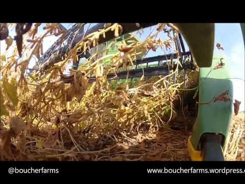 Harvesting Soybeans with a GoPro at 3.5mph
