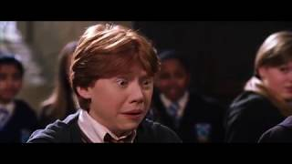 Harry Potter and The Ting Go Skrrraa