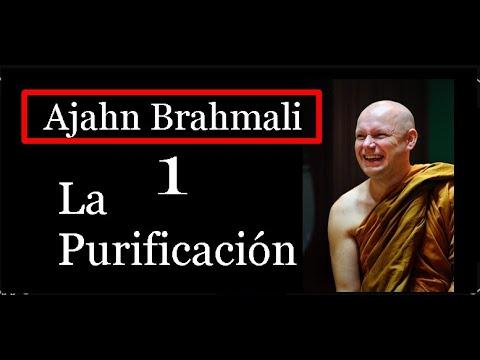 Ajahn Brahamali-1- La Purificación - Evitando lo Negativo.SubEsp