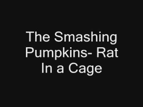 Smashing Pumpkins - Rat In A Cage