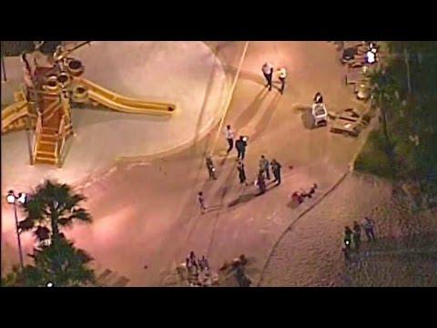 Disney Alligator Attack: Toddler Found Dead