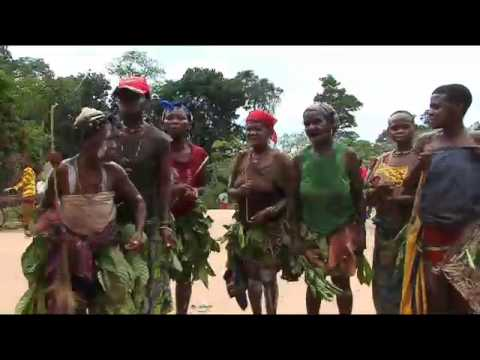 Rare footage of Mbute pygmies (forest people) of central Africa performing a traditional dance. The Mbute forest people have been the victims of unspeakable ...
