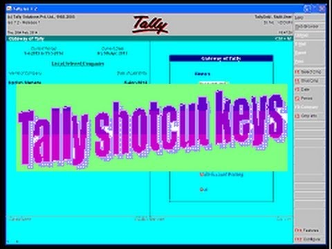 tally erp 9 tutorial pdf free download in english