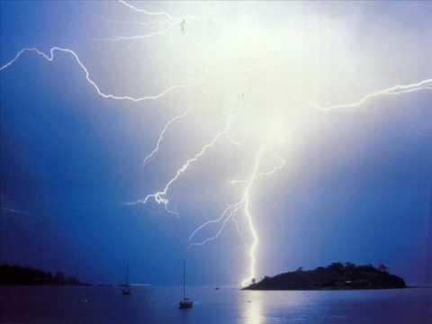 zea mays -elektrizitatea-