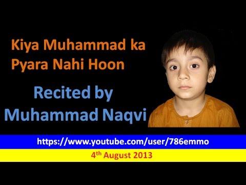 Shahryar Naqvi - Kya Muhammad Ka Pyara Nahi Hoon video