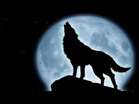 Wolf Music Instrumental Full Moon Youtube