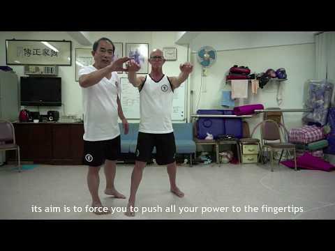 Master Hang Ng Chow Gar Tong Long Kung Fu Masters
