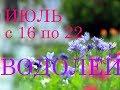 ВОДОЛЕЙ. ГОРОСКОП на НЕДЕЛЮ с 16 по 22 ИЮЛЯ 2018г. +БОНУС.