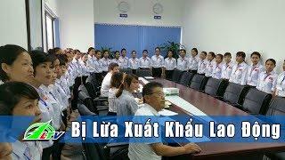[Tâm Điểm] DOANH NGHIỆP Lừa Xuất Khẩu Lao Động | Lâm Đồng  | LDTV