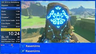 Breath of the Wild any% in 38:22