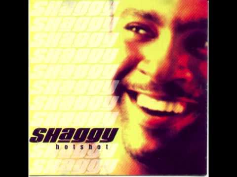 Shaggy - Not Fair