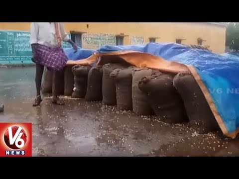 Warangal, Bhupalapally Dist Farmers In Concern As Sudden Rain Damages Crops | V6 News