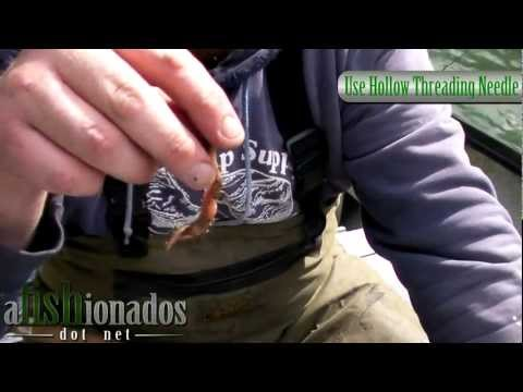 How-To Rig a Nightcrawler and Spin-N-Glo Combo for Diver and Bait Steelhead Fishing